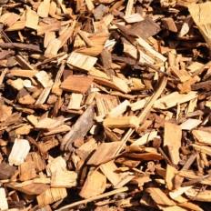 Cypress Pine Wood Chip