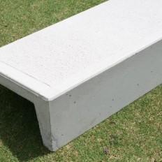 Concrete Step and Riser
