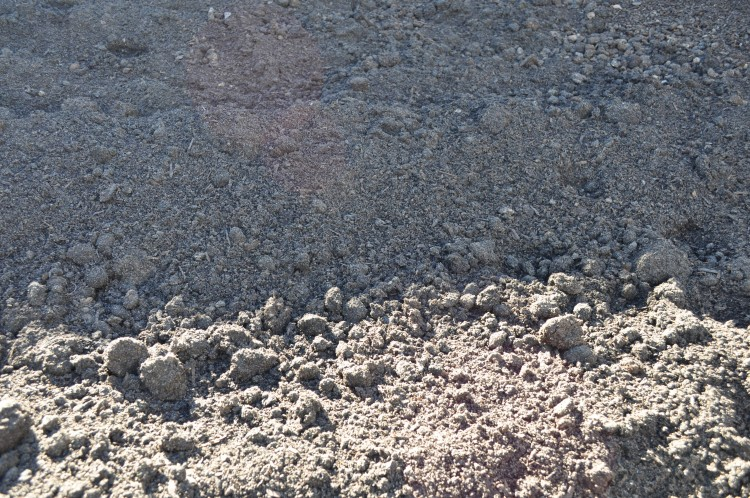 Cow Manure Parklea Sand And Soil